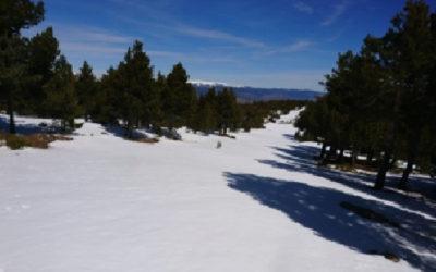 Excursión cerro La Genciana