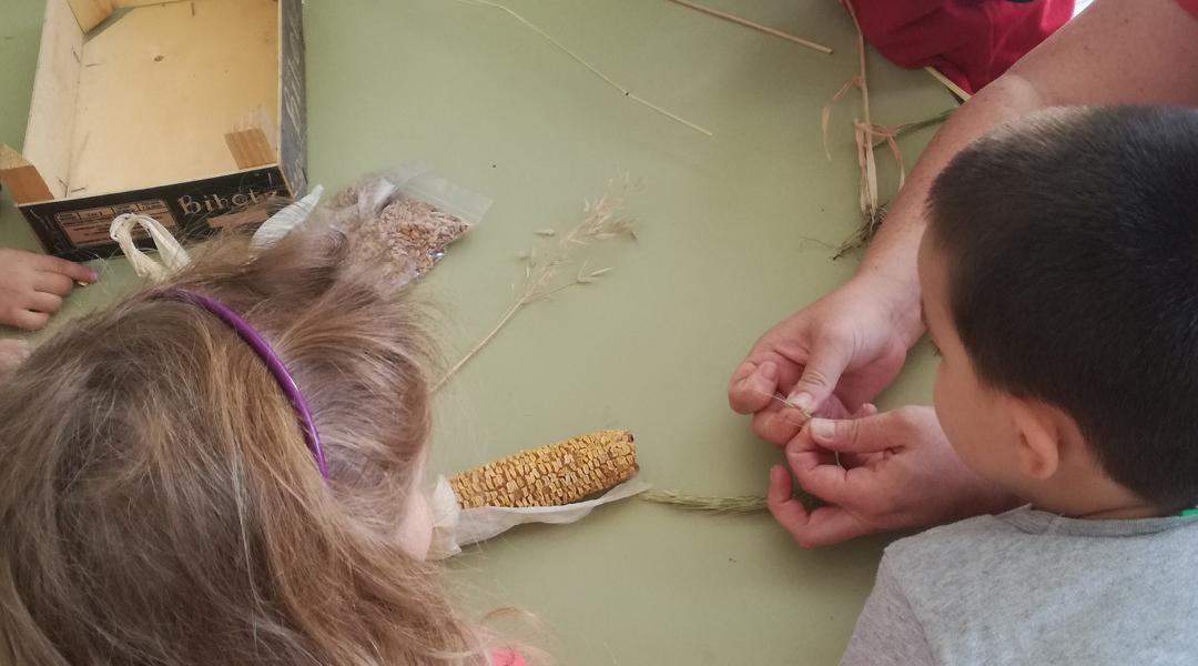 Bizcochos con cereales de nuestro huerto