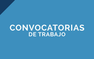 Primaria – Inglés